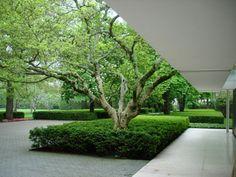 Landscape Architect Dan Kileys