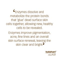 Have you ever wondered about how enzymes function? Try Kalahari Lifestyle's Enzyme Face Buff to experience the exceptional exfoliation benefits of enzymes! Unclog Pores, Dull Skin, Clear Skin, Centre, How To Remove, Surface, Skin Care, Lifestyle, Math Equations