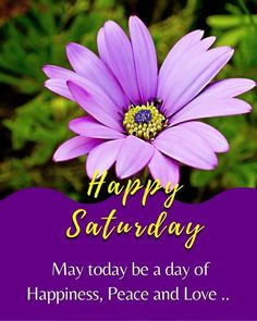 Saturday Quotes, Happy Saturday, Sunday, Morning Qoutes, Days Of Week, Good Afternoon, Good Night, Peace And Love, Collection