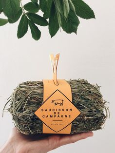 Saucisson de Campagne (Student Project) on Packaging of the World - Creative Package Design Gallery