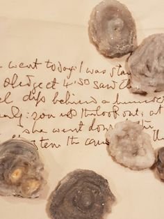 Rosalind wyatt Sample of Ernest Shackleton's handwriting taken from his diary from Endurance expedition 1914 Diy Couture, Some Pictures, Handwriting, Burberry, Stitch, Artist, Embroidery, Image, Calligraphy