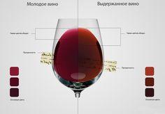О чем говорит цвет вина
