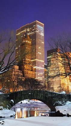 New York City at Night from Central Park in the snow