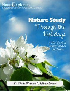 Easter and Nature Study - lessons to teach the final week of Jesus' life and the Gospel message