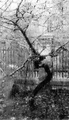 Through the Window of My Atelier by Josef Sudek
