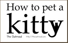 How to Pet a Kitty (this is true)