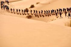 The 100 best pictures of 2016:      Competitors take part in the 31st Marathon des Sables, a 257 km race through the southern Moroccan Sahara desert, on April 10.