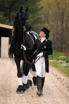 Beautiful Friesian Casper, Dressage