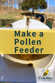 Bees need pollen. How to make your own pollen feeder for honey bees. #carolinahoneybees #pollen #bees #diybeekeeping #beginnerbeekeeping