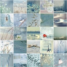 shades of blue aesthetic Collages, Color Collage, Beautiful Collage, Photo Images, Photocollage, Something Blue, Color Pallets, Colour Schemes, Belle Photo
