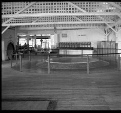 American Associated Ins. Co. Int. photo of Wheel of Fun. Photos made at Fontaine Ferry Park. :: Royal Photo Company Collection