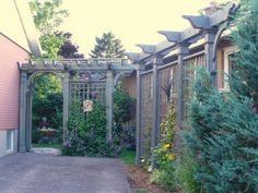 Driveway privacy trellis and arbour entrance to garden. View looking west.