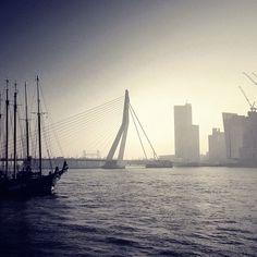 #rotterdam #holland #erasmusbrug