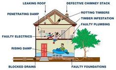 Google Image Result for http://www.napoleon.cc/tips/wp-content/uploads/2012/04/house-defects-that-matter.jpg