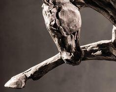 Horses sculptures by Stephanie Revennaugh, born 1973 - USA