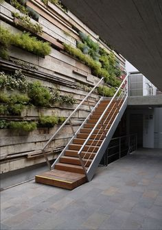 Green Wall / Zentro Office Building and Commercial - Gonzalez Moix Arquitectura Green Architecture, Architecture Details, Landscape Architecture, Landscape Design, Garden Design, Natural Architecture, Architecture Panel, Design Exterior, Interior And Exterior