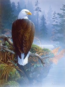 Eagle in the Mist (1000 Piece Puzzle by SunsOut)