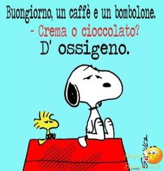 Immagini bellissime da BuongiornoAmici.it Funny Memes About Girls, Funny Dog Memes, Funny Books For Kids, Funny Kids, Funny Shirt Sayings, Funny Quotes, Funny Texts Pregnant, Italian Humor, Friend Jokes