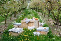 Spring in the garden. Garden Furniture, Outdoor Furniture Sets, Outdoor Decor, Most Beautiful Gardens, Seat Pads, Lawn, Diys, Patio, Interior