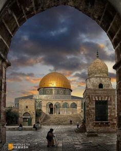 Eye On Palestine                                                                                                                                                                                 More