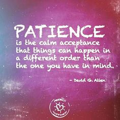 Patience is the calm acceptance that things happen in a different order than the one you had in mind.