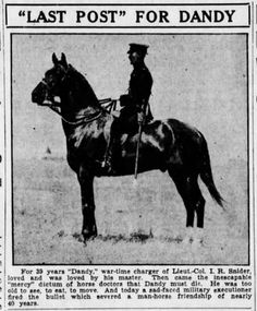 Horses in History: 'Dandy,' A True War Horse Hero  Eighty-three years ago, a local newspaper shared the story of an amazing connection of a man and his horse during WWI, and the tear-jerking tale of how the two came to came to good-bye.