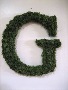 Moss covered initial. Letter from Hobby Lobby, glue gun, and moss (and a lot of patience for glueing each little tuft of moss).