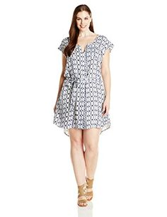 BB Dakota Women's Plus-Size Andela Inkblot Stripe Printed Rayon Crepe Shirtdress, Multi, 2X