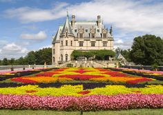 """Floral Carpet at the Biltmore Estate"" via Flickr 