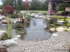 Mark the pond guy Sumner Wa.From Mark the pond guy Sumner Wa. Backyard Water Feature, Ponds Backyard, Outdoor Ponds, Garden Ponds, Backyard Waterfalls, Outdoor Fountains, Water Fountains, Garden Fountains, Backyard Patio