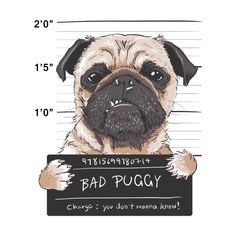 Bad Puggy   Dog Lover's T-Shirts Pug Tumblr, Walpapers Cute, Pug Art, Bad Relationship, Dog Illustration, New Puppy, Boys T Shirts, Funny Stickers, Cute Dogs