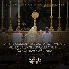 """""""At the moment of adoration, we are all equal, kneeling before the Sacrament of Love."""" - Pope Emeritus Benedict XVI"""