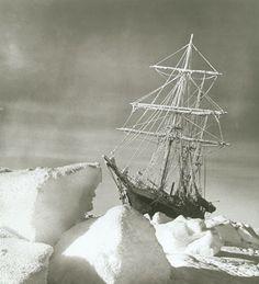 Endurance amid the Ice