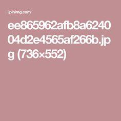 ee865962afb8a624004d2e4565af266b.jpg (736×552)