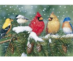 This puzzle features a pair of cardinals sitting on a snowy spruce bough with their friends: a bluebird, a chickadee, and a goldfinch! Makes a great project for snow days with the family. Made in the