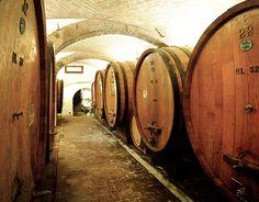 Visite e degustazioni – Villa Sant'Anna