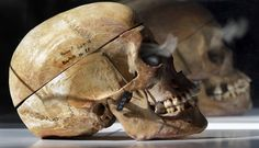 Over 1,000 African skulls in Berlin are a reminder of Europe's dark colonial history