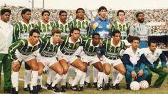 Palmeiras super campeão de 1993.