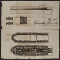 THE WANDERER: THE LAST AMERICAN SLAVE SHIP AND THE ...