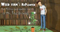 I  Weed Firm: RePlanted. Check out the famous weed growing game!