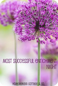 One of our most well received Enrichment Nights has been our progressive dinners. We just had our this year (Sept.) and it was very well attended. The best part of it was that we had another ward incorporated into ours … Enrichment Activities, Church Activities, Christmas Activities, Relief Society Lessons, Relief Society Activities, Purple Flower Photos, Purple Flowers, Lds, Allium Flowers