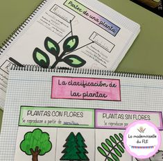 Natural, Bullet Journal, Plants, Charlotte, Instagram, Flowering Plants, Plant Parts, Teacher Stuff, Interactive Notebooks