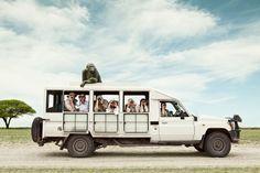 Zack Seckler  |  Photographer - Humor