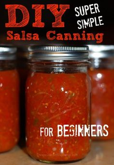 DIY Salsa Canning for Beginners: Use Up Ripe Tomatoes - DIY Salsa Canning for Beginners, using Ball Canning jars. Sharing 3 different methods and lots of helpful tips and time saving tricks! Salsa Canning Recipes, Canning Salsa, Canning Tips, Home Canning, Homemade Salsa For Canning, Easy Canned Salsa Recipe, Salsa Recipe For Freezing, Cooked Salsa Recipe, Gastronomia
