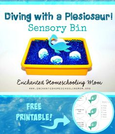 Diving with a Plesiosaur Sensory Bin