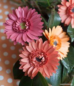 Gerbera oder in kleiner als Gänseblümchen :) aus Papier mit kostenloser Anleitung