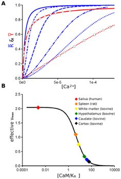 S.J. Edelstein, M.I. Stefan, N. Le Novère (2010) Ligand depletion in vivo modulates the dynamic range and cooperativity of signal transduction PLoS ONE, 5(1): e8449.