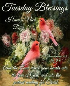 Tuesday blessings to you . Blessed Morning Quotes, Tuesday Quotes Good Morning, Blessed Quotes, Morning Greetings Quotes, Monday Blessings, Biblical Womanhood, People In Need, Bible Quotes, Faith Quotes