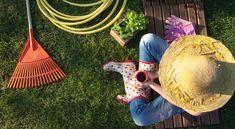 Augusztusi kerti munkák - Ültetés, metszés és egyéb feladatok a nyár végén
