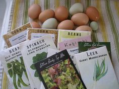 Homesteading First Steps